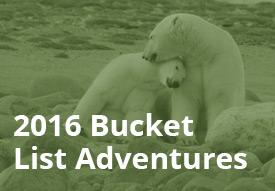 stories-bucket