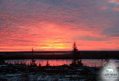 Red Sunset Tundra In Churchill Manitoba